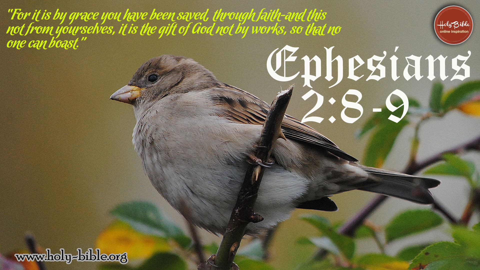 Bible Verse of the day - Ephesians 2:8-9