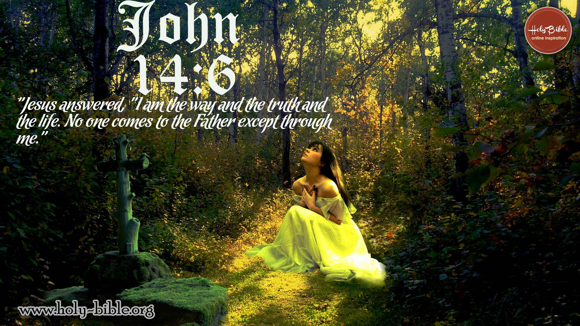 Bible Verse of the day - John 14:6